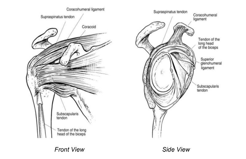 What to Expect After Your Shoulder Arthroscopy and Labral Repair